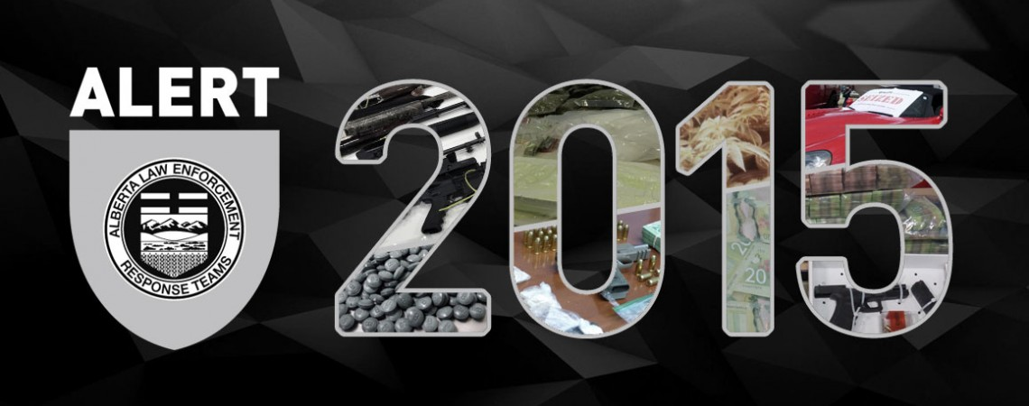 2015-yera-in-review